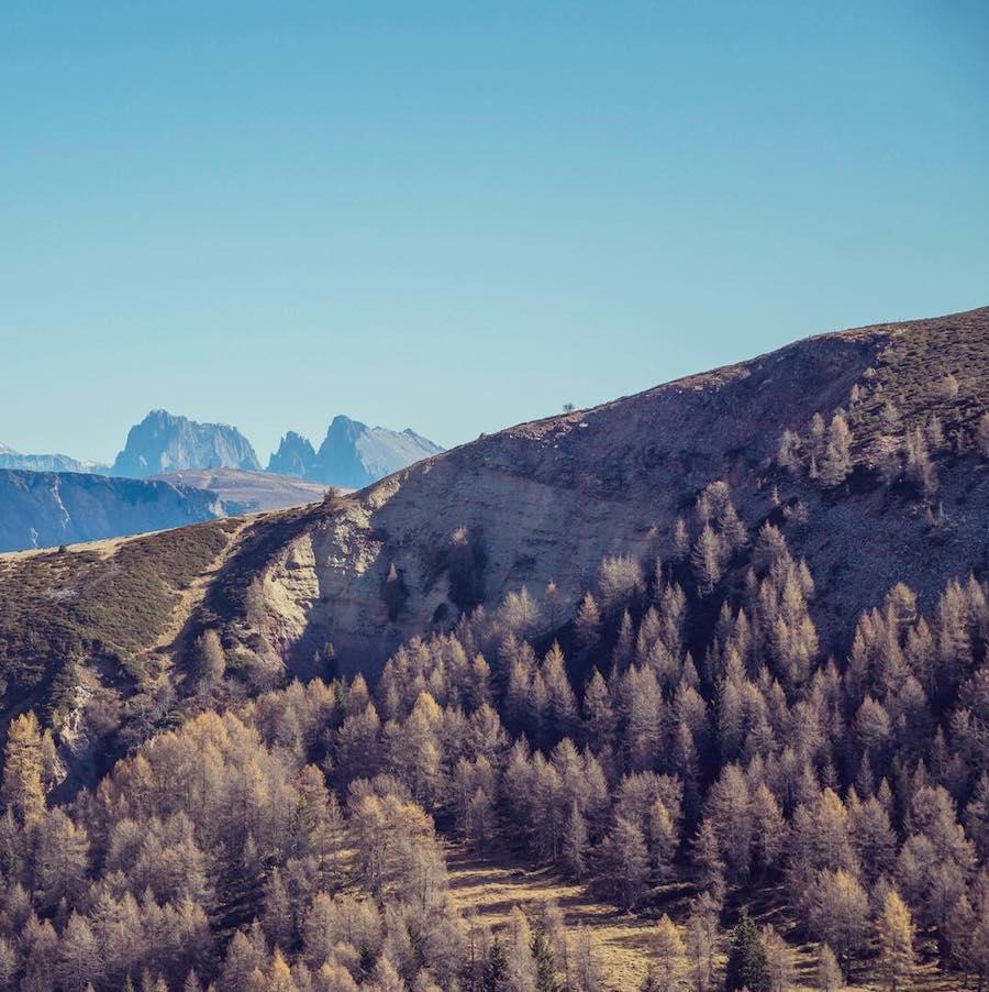 A Tasty Hike - Kulinarisches Wanderjahr 2017 - Dolomiten von Meran 2000