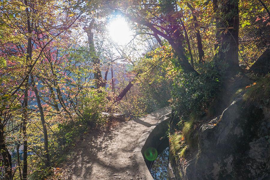 A Tasty Hike - Wandern Algunder Waalweg - Abendlicht