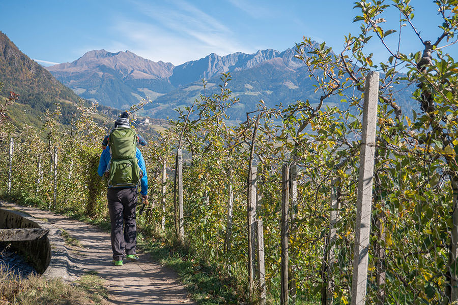 A Tasty Hike - Wandern Algunder Waalweg - Christian