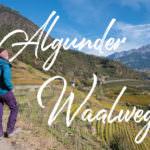 8 Kilometer schönste Aussicht auf dem Wanderung Algunder Waalweg in Südtirol