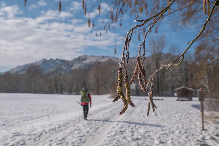 A Tasty Hike - Microadventure - Wanderung Schmiedsfelden - Macro