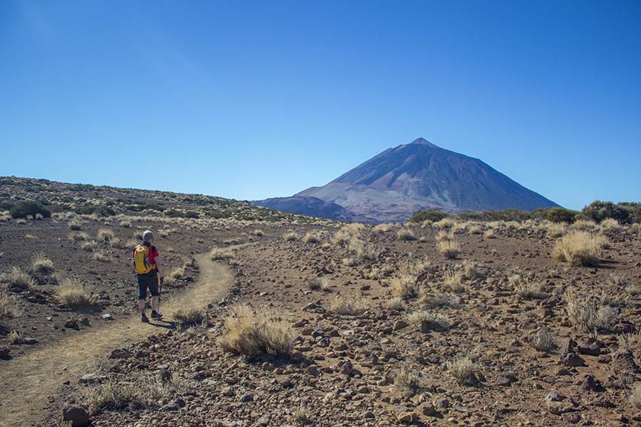 Wandern auf Teneriffa auf eigene Faust - A Tasty Hike - Hochebene El Teide