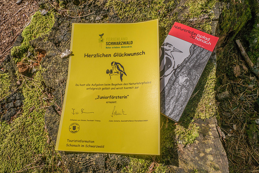 Wandern Schwarzwald - A Tasty Hike - Juniorfoerster Urkunde