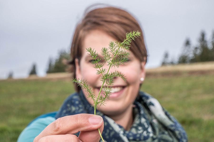 Wandern Schwarzwald - A Tasty Hike - Kraeuter