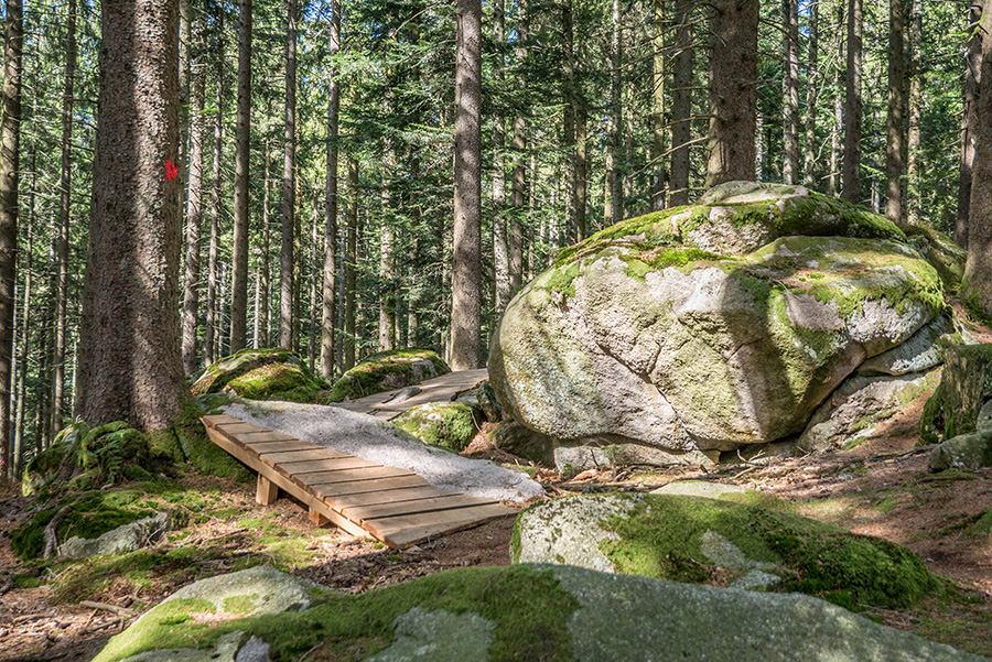 Wandern Schwarzwald - A Tasty Hike - Schalensteinpfad