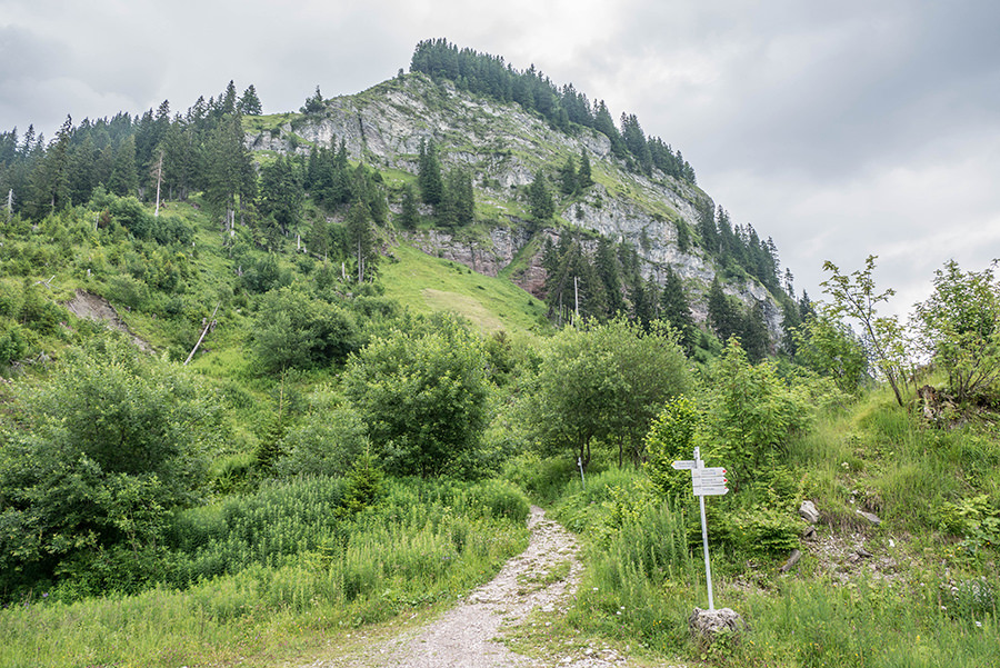 Bad Hindelang wandern - Wanderung zum Imberger Horn im Allgaeu - A Tasty Hike - Startpunkt Aufstieg