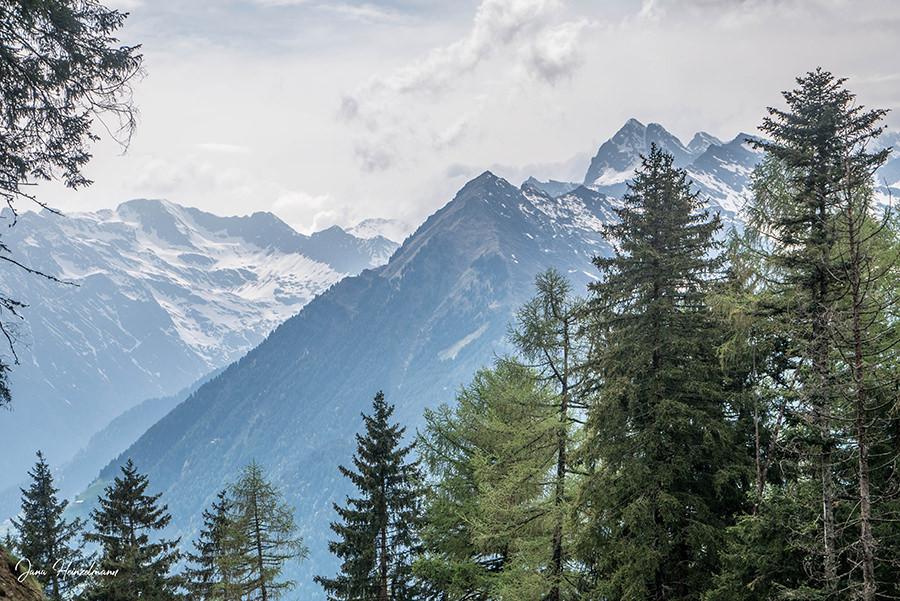 Schenna Wandern - Streitweideralm - Suedtirol - A Tasty Hike - Aussicht Taser - Schneebedeckte Berge