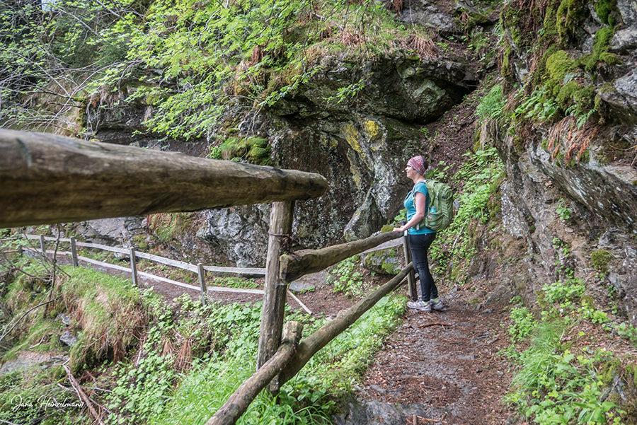 Schenna Wandern - Streitweideralm - Suedtirol - A Tasty Hike - Aussicht geniessen