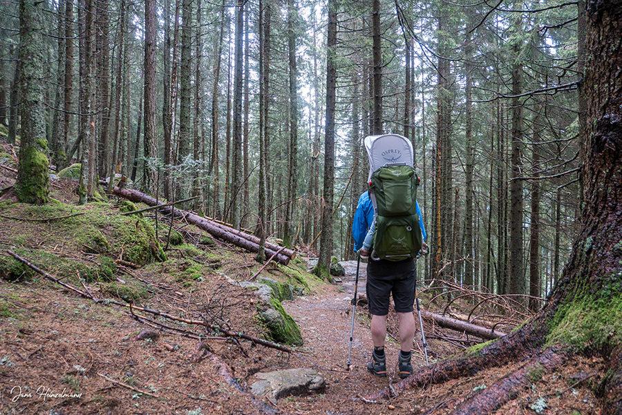 Schenna Wandern - Streitweideralm - Suedtirol - A Tasty Hike - Rueckweg