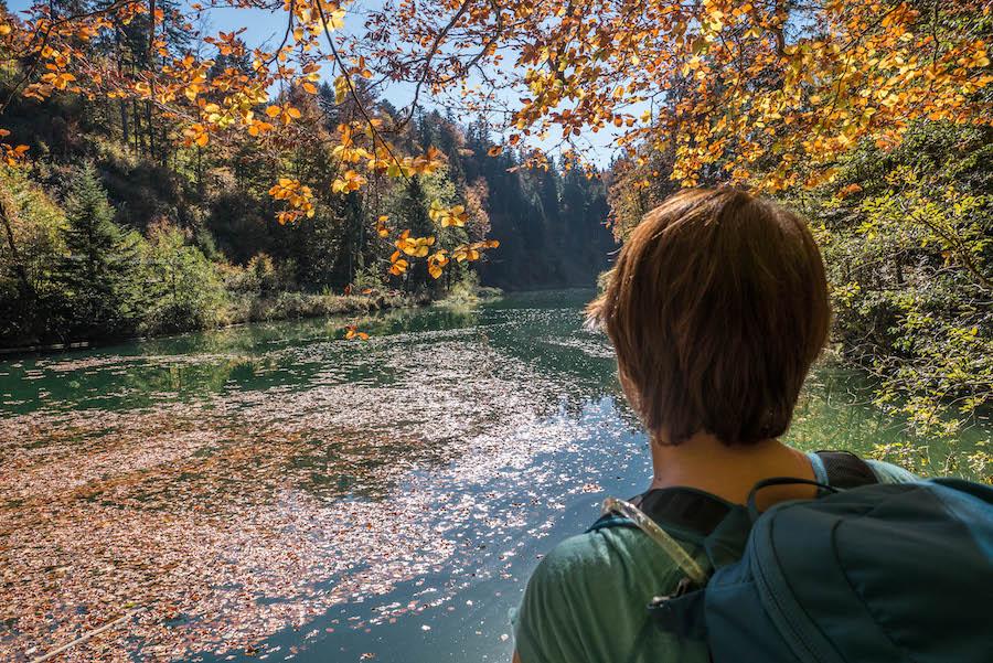 A Tasty Hike Jahresrueckblick 2018 - Sennalpe Derb Allgaeu