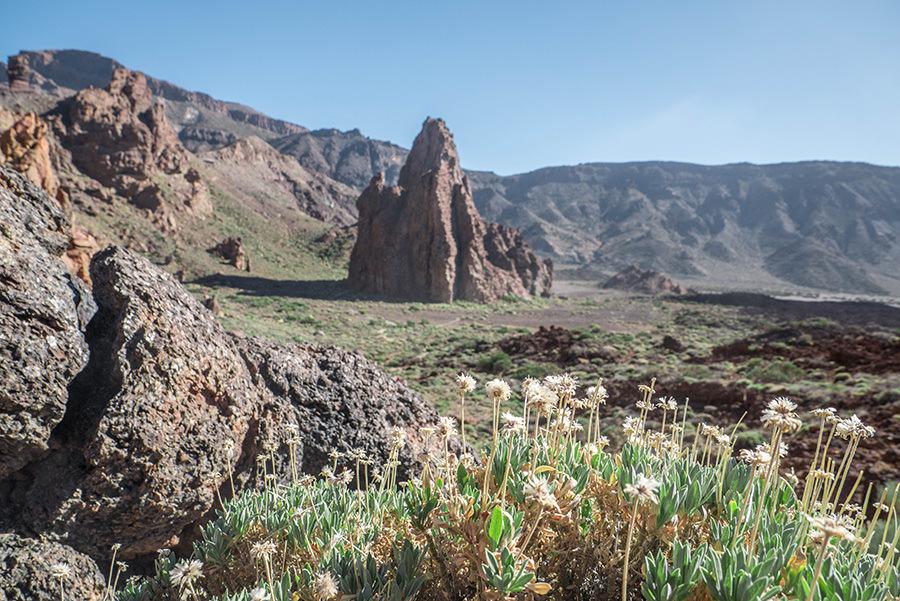 A Tasty Hike - El Teide Gipfel Teneriffa - Wanderung Roques de Garcia - Kathedrale