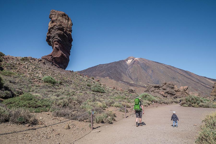 A Tasty Hike - El Teide Gipfel Teneriffa - Wanderung Roques de Garcia - Steinerner Baum