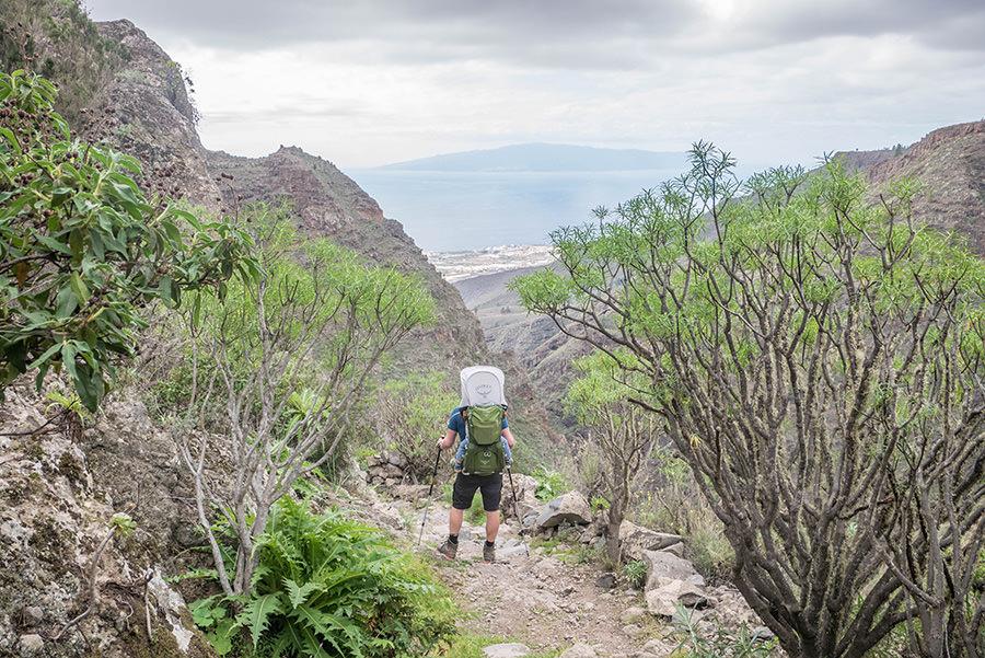 A Tasty Hike - Wanderfuehrer Teneriffa - Kleine Ifonche Runde - Der Abstieg