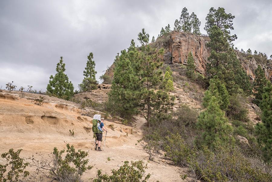A Tasty Hike - Wanderfuehrer Teneriffa - Kleine Ifonche Runde - Erosionssattel
