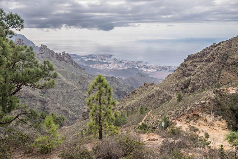 A Tasty Hike - Wanderfuehrer Teneriffa - Kleine Ifonche Runde - Spektakulaere Aussicht
