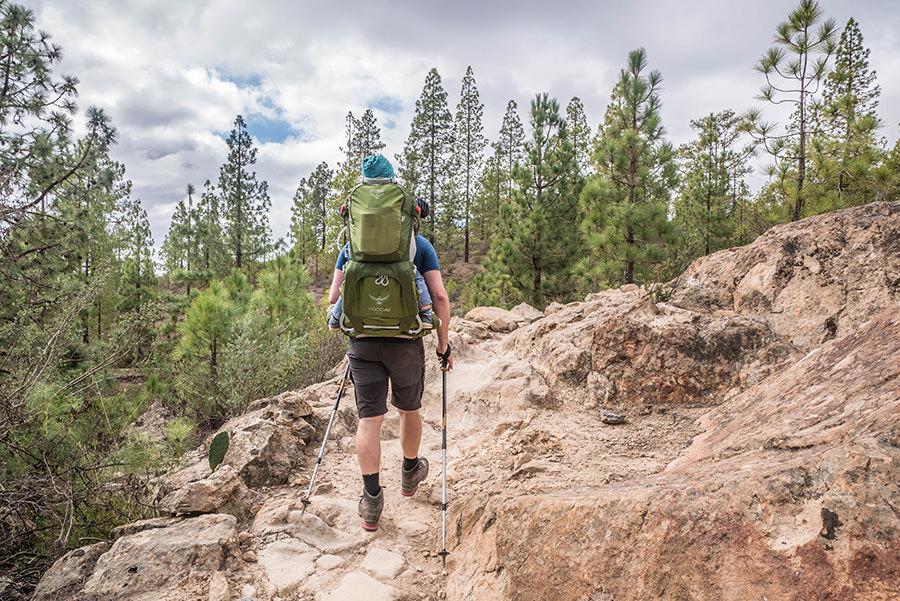 A Tasty Hike - Wanderfuehrer Teneriffa - Kleine Ifonche Runde - Start der Wanderung