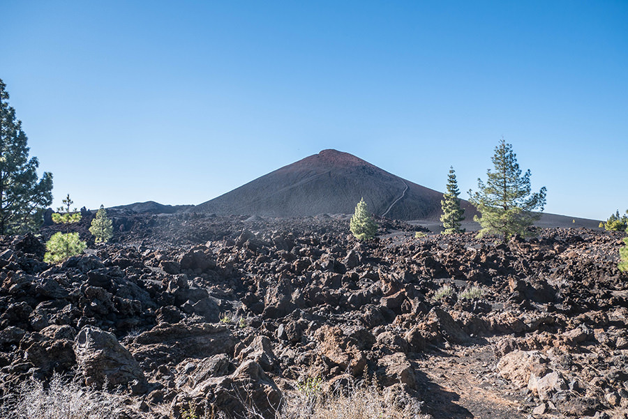 A Tasty Hike - Wandern Teneriffa - Rundwanderung Vulkan Chinyero - Chinyero alleine