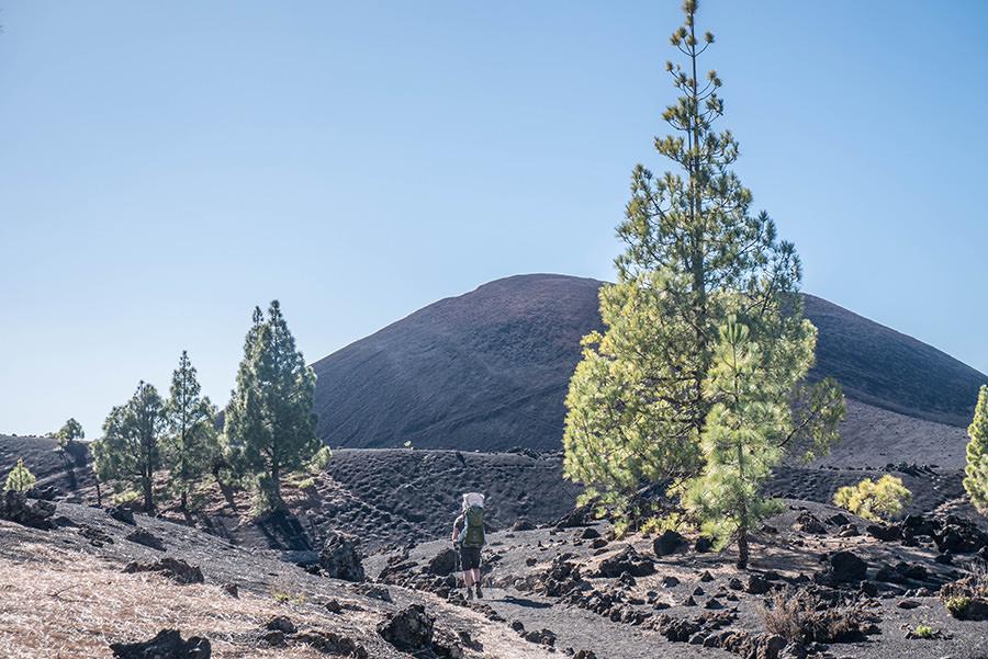 A Tasty Hike - Wandern Teneriffa - Rundwanderung Vulkan Chinyero - Chinyero mit Lavafeld