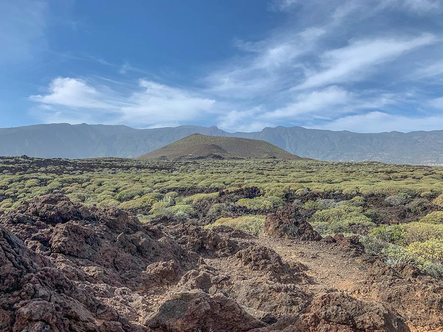 A Tasty Hike - Kuestenwanderung - Teneriffa - Malpais de Gueimar - Montana Grande