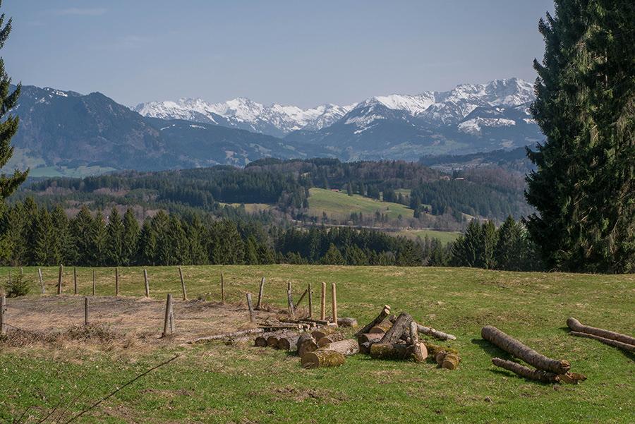A Tasty Hike Genusswandern Allgäu - Wanderung zur Siedelalpe am Alpsee 10
