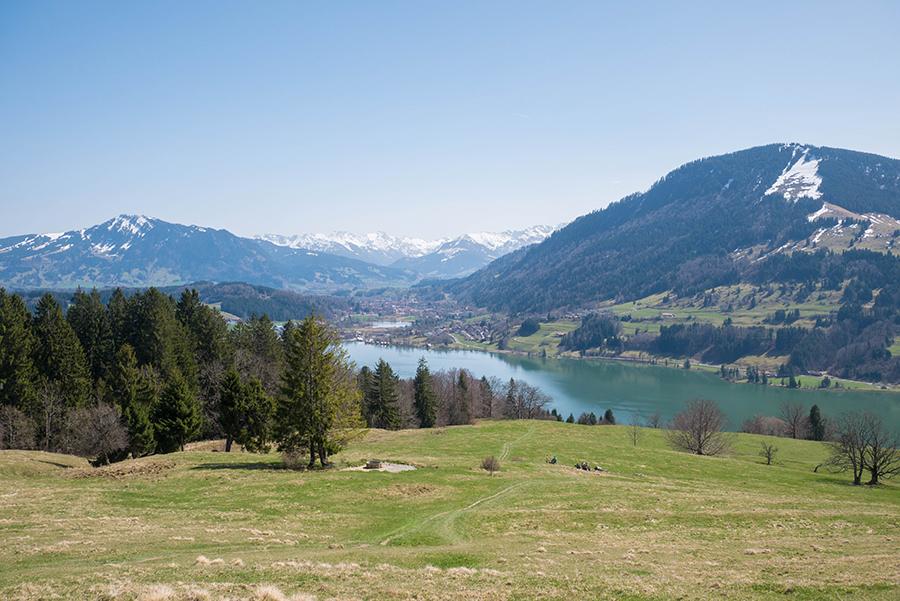 A Tasty Hike Genusswandern Allgäu - Wanderung zur Siedelalpe am Alpsee 8