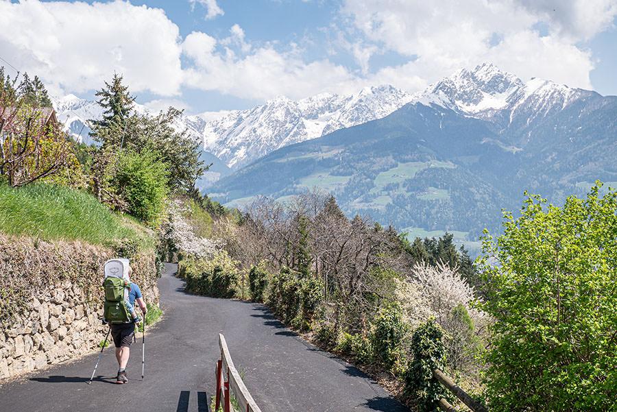 A Tasty Hike - Dorf Tirol Wandern - Suedtirol - Farmerhoefe