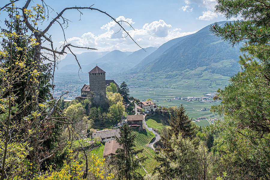 A Tasty Hike - Dorf Tirol Wandern - Suedtirol - Schloss Tirol von oben