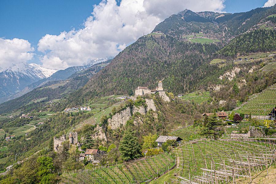 A Tasty Hike - Dorf Tirol Wandern - Suedtirol - Schloss Tirol