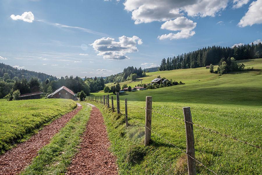 A Tasty Hike - Salmaser Hoehe und Thalerhoehe - Allgaeu - 18
