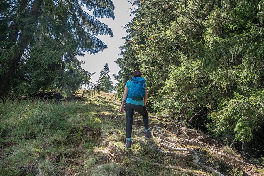 A Tasty Hike - Salmaser Hoehe und Thalerhoehe - Allgaeu - 3