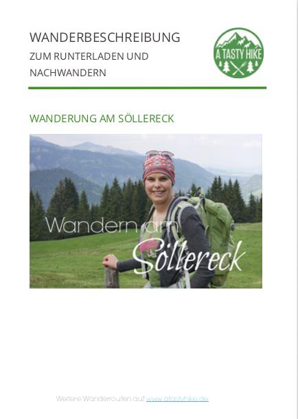 Wandern in Oberstdorf - Wanderbeschreibung vom Soellereck nach Rietzlern