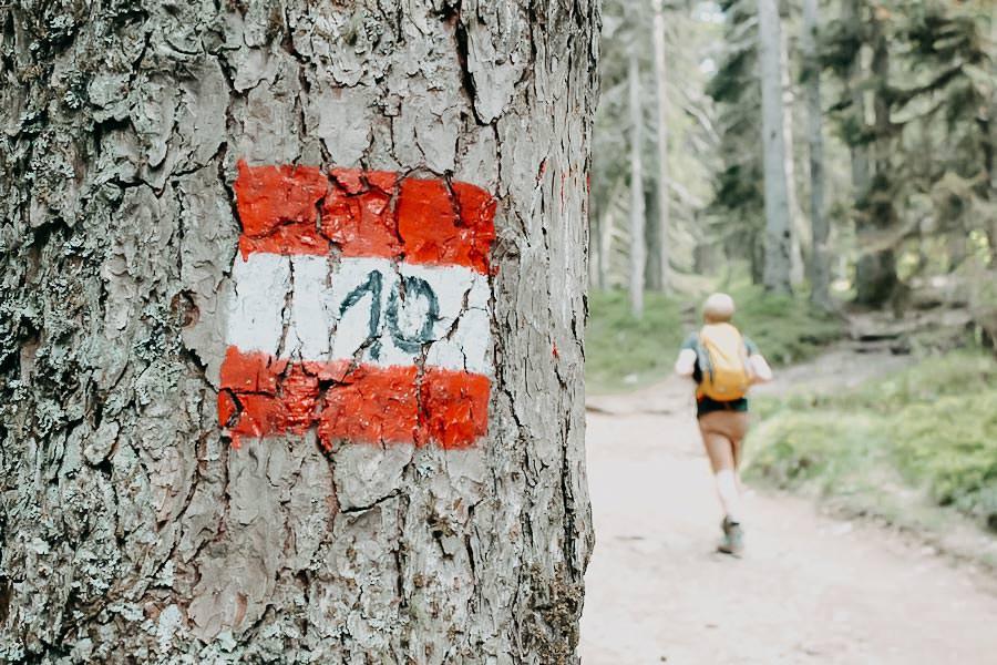 A Tasty Hike - Suedtirol Wandern - Suedtirol Tipps - Vigiljoch