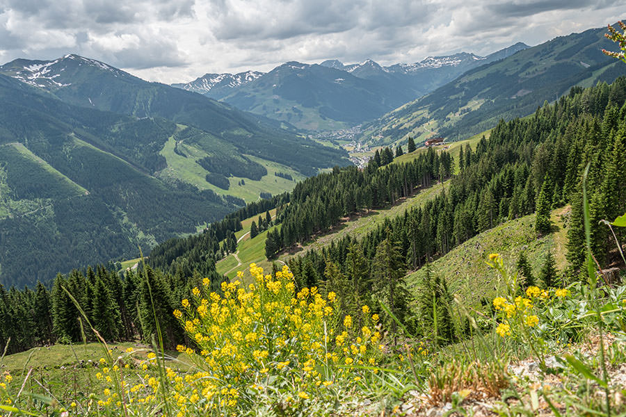 Saalbach Hinterglemm Sommer - Wanderung vom Kohlmaiskopf zur Wildenkarhuette - A Tasty Hike - Aussicht Tal