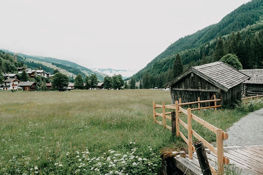 A Tasty Hike - Saalbach Hinterglemm mit Kindern - Talschluss - Tal