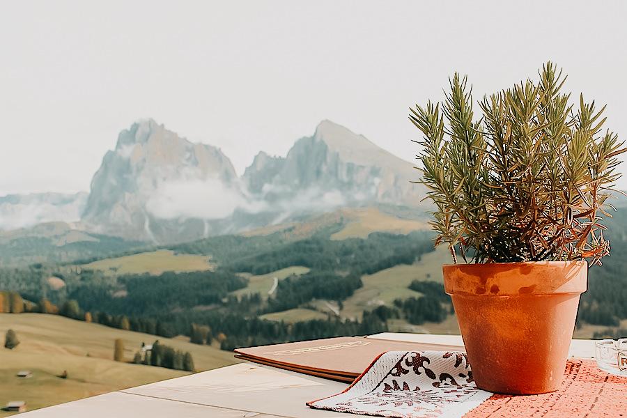 A Tasty Hike - 5 Huetten in Suedtirol - Unsere Favoriten - Rauch Huette Seiser Alm Aussicht