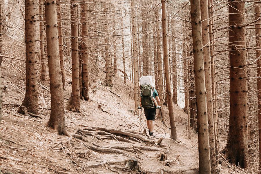 A Tasty Hike - Gruenten Wandern - Lustiger Wanderweg Allgaeu - romantischer Felsenwald