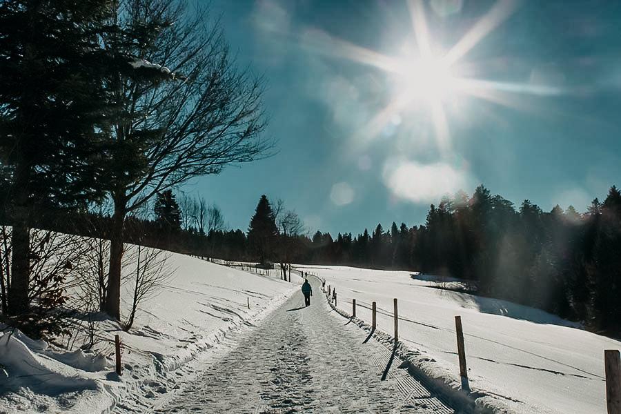 A Tasty Hike - Wandern im Winter - Premiumwanderweg - Allgaeu
