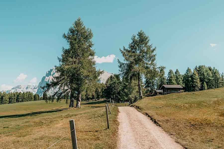 Seiser Alm Wandern - A Tasty Hike - Genusswanderung - Wanderweg