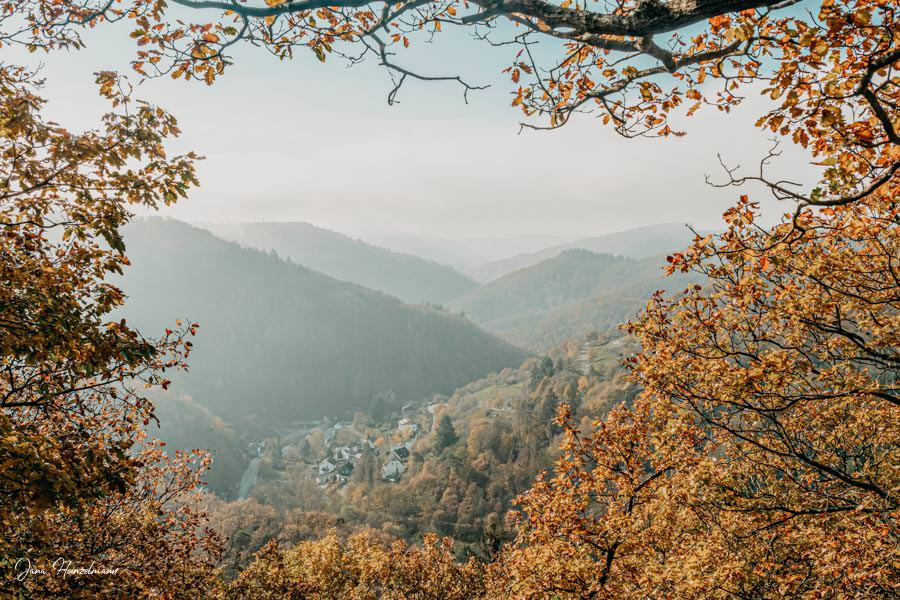 Tagesausfluege Hessen - Secret Places in Hessen - Taunus - Wisper Trails - Dickschieder Wildwechsel - Dickschieder Fenster