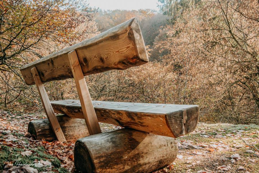 Tagesausfluege Hessen - Secret Places in Hessen - Taunus - Wisper Trails - Dickschieder Wildwechsel - Thron