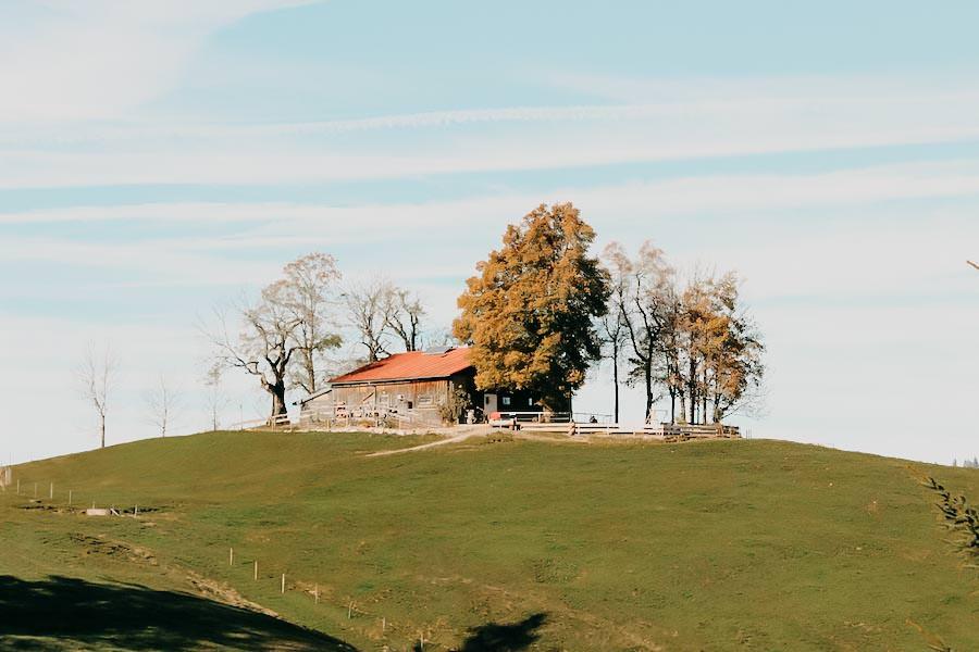 Alpsee wandern - 5 Genusswanderungen am Alpsee im Allgaeu - Pfarralpe