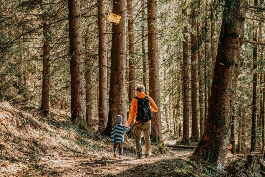 Adelegg Wanderung Kreuzthal – Ulmertal – Wald