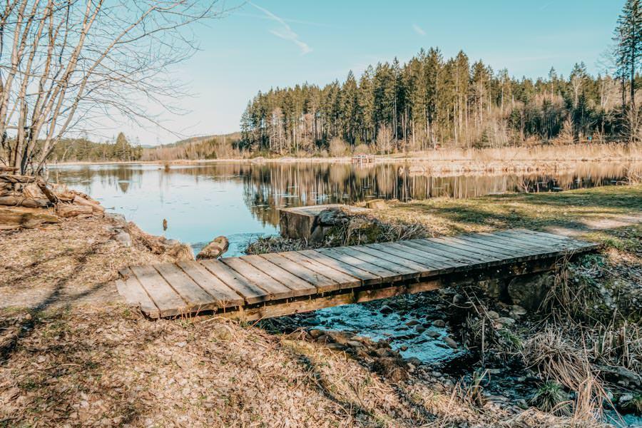 Isny Wandern - gemuetliche Runde zum Herbisweiher bei Isny im Allgaeu - Weiher Bruecke