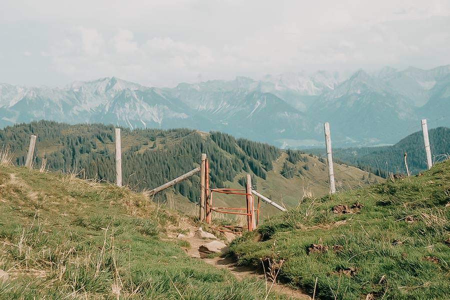 Wanderungen Allgaeu – Die schoensten Wanderungen im Sommer – Riedberger Horn