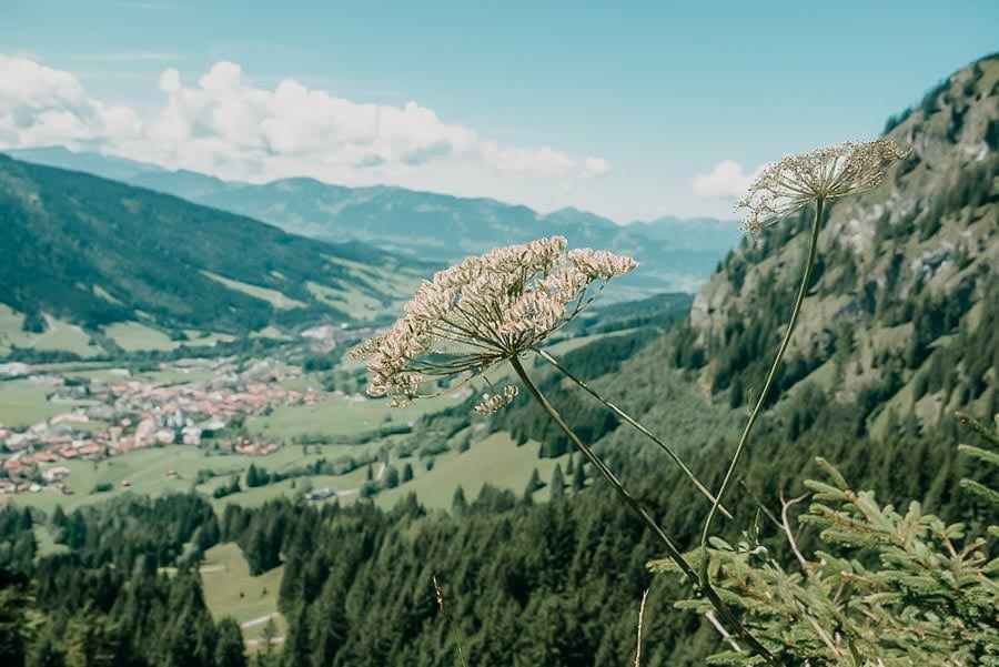 Wanderungen Allgaeu – Die schoensten Wanderungen im Sommer – Spieser