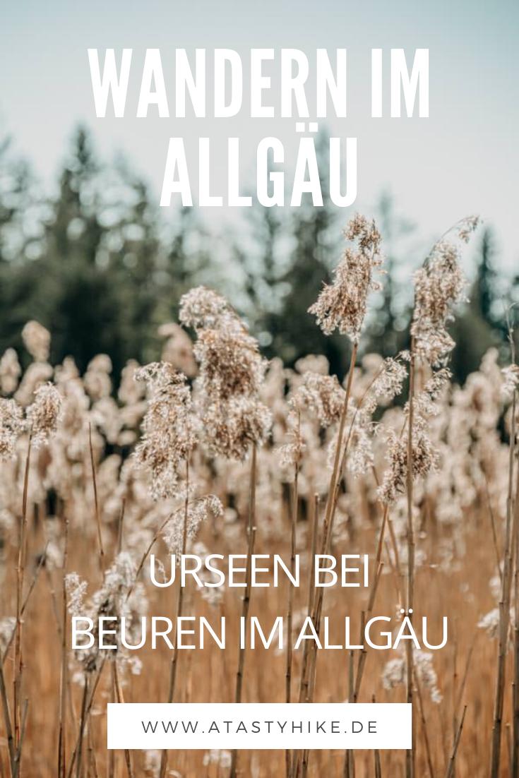 Verwunschener Märchenwald inklusive: Gemütliche Wanderung bei den Urseen in Beuren im Allgäu