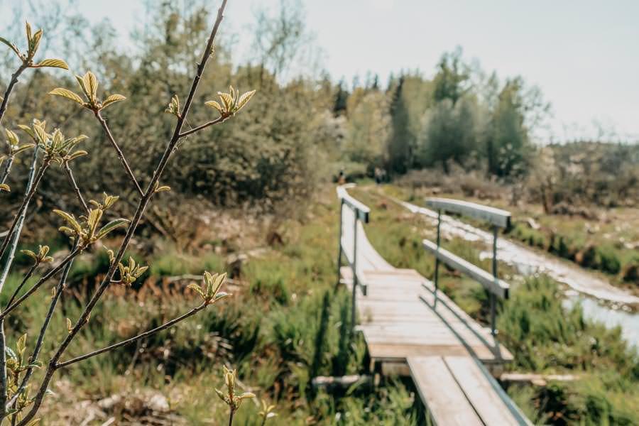 Wanderung Urseen bei Beuren im Allgaeu – Bruecke