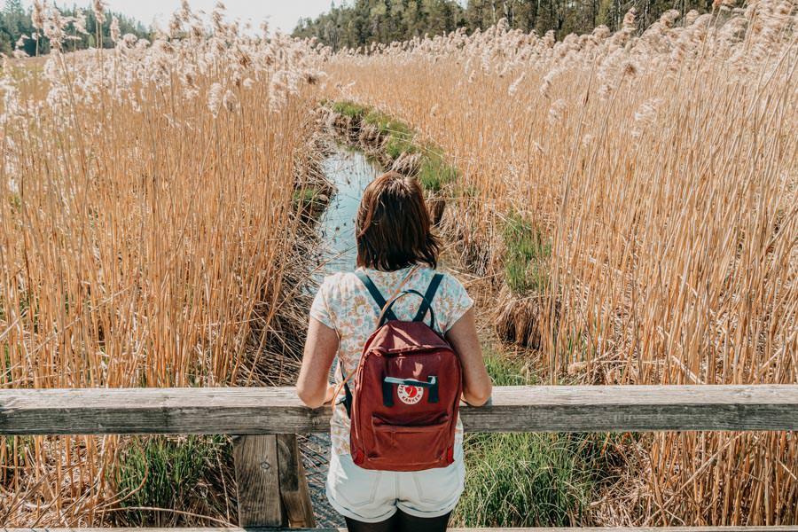 Wanderung Urseen bei Beuren im Allgaeu – Jana im Moor