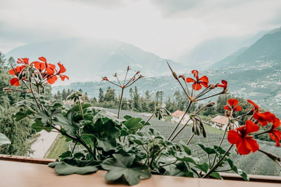 Pension Schenna – Pension Hahnenkamm – Ferienwohnung Balkon