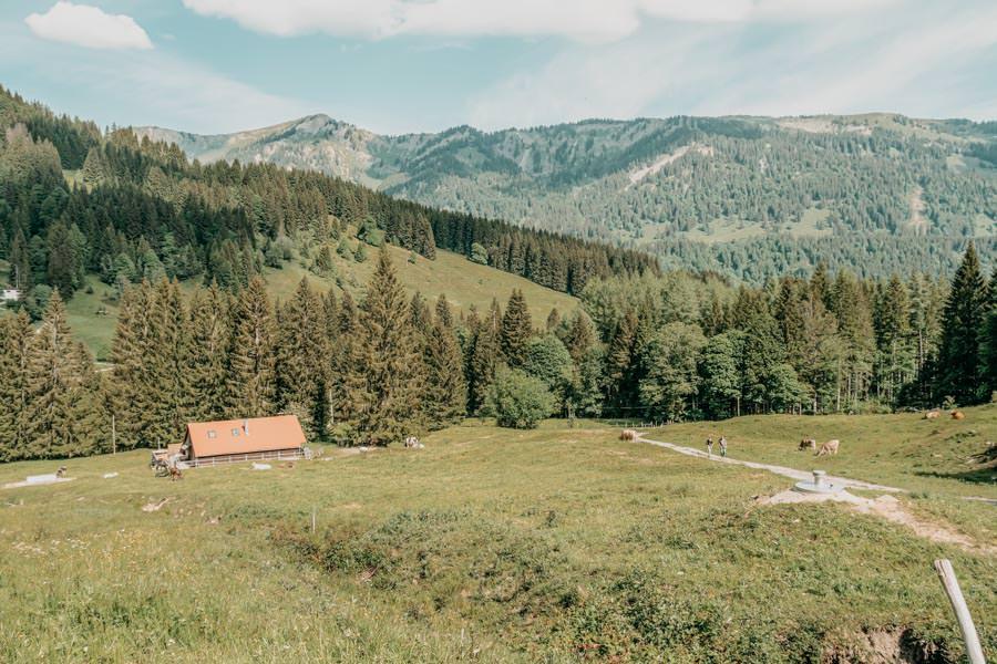 Rangiswanger Horn durch den Ostertal Tobel im Allgeau – Aussicht